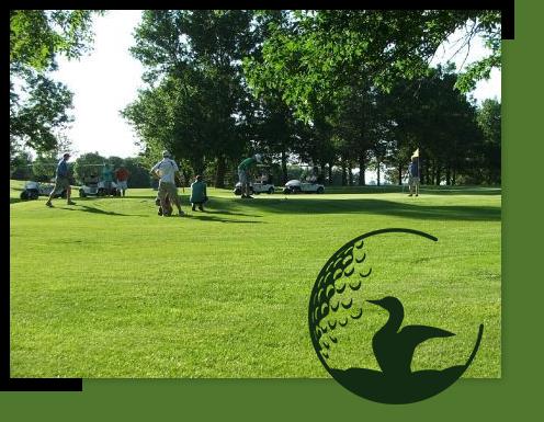Loon Lake Golf League Golfers